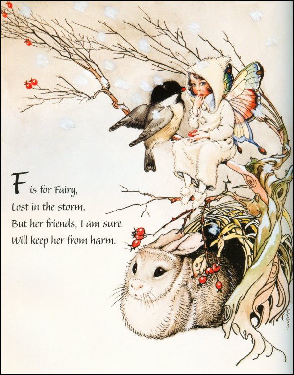 F Y Cory Fairy Snow Storm Book